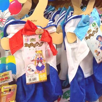 Sailor Moon and Sailor Scouts Dog Costumes!