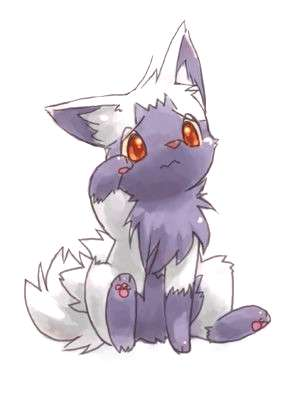 Poochyena. This used to be my favorite pokemon. -   -