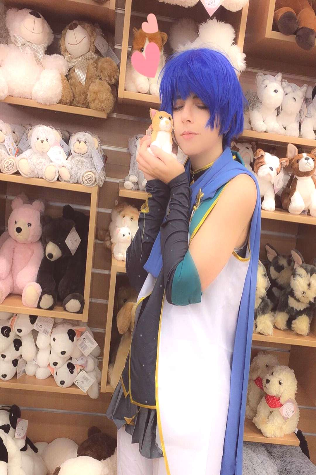When Kaito meet a cat plush (〃w〃) Photographe: 。 。 。 #c